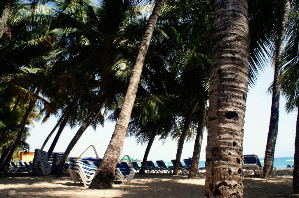 サーフィンの聖地、カバレテビーチ/La Meca para los surfistas, la playa de Cabarete