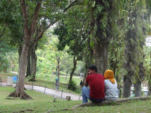 緑溢れる公園。マレーシアはマレー系・中国系・インド系などから成る多民族国家。