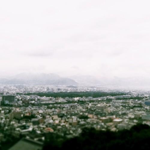京都御所の大きさが実感できる